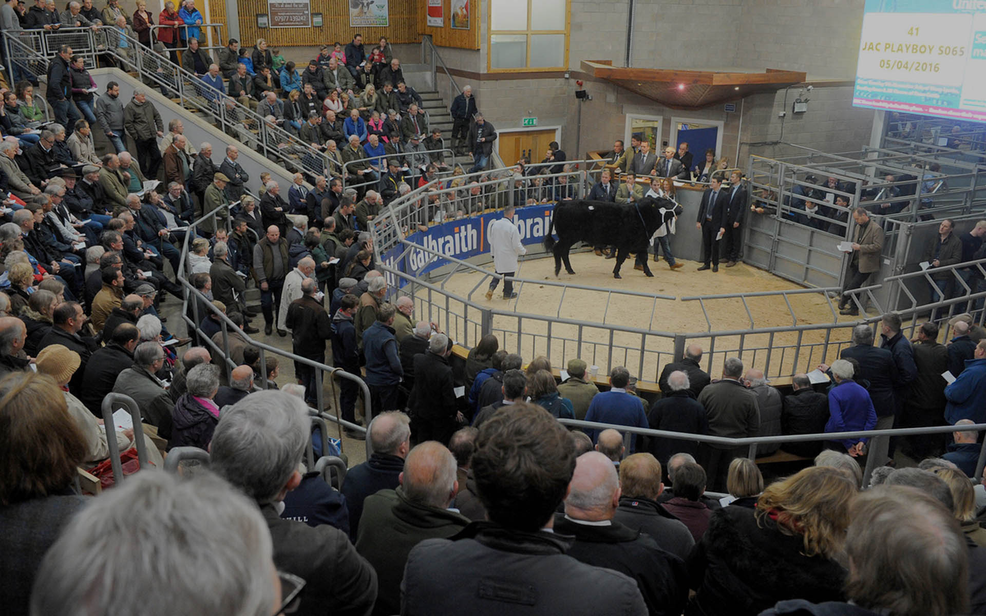 The Institute of Auctioneers and Appraisers in Scotland